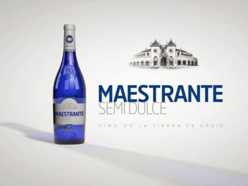 Spot TV Maestrante